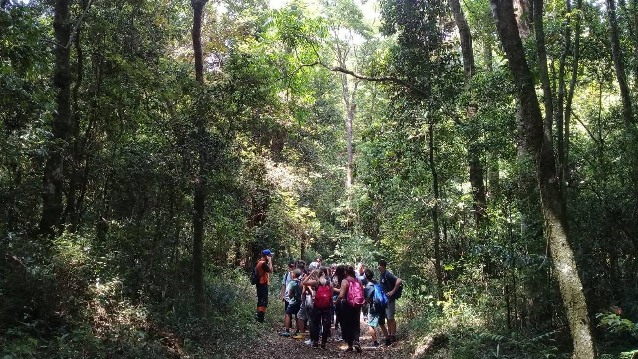 Serra do Japi – Fazenda Guaxinduva